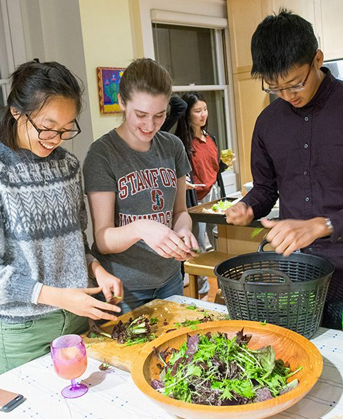 Students prepare a meal made from sustainable ingredients